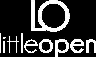 logo_little_white